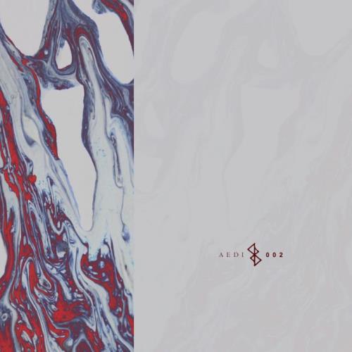 Aedi Records - Synergy (2021)