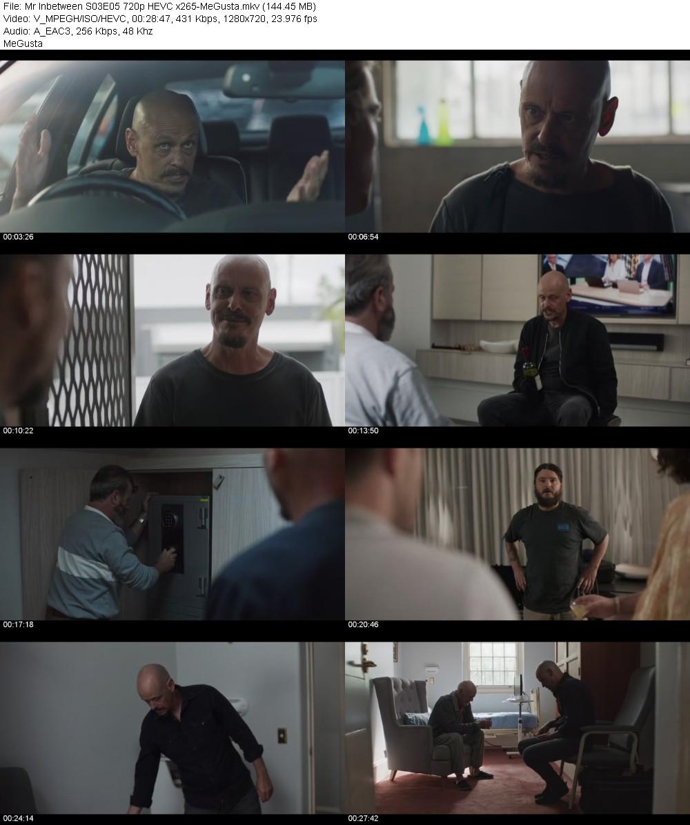 Mr Inbetween S03E05 720p HEVC x265-MeGusta