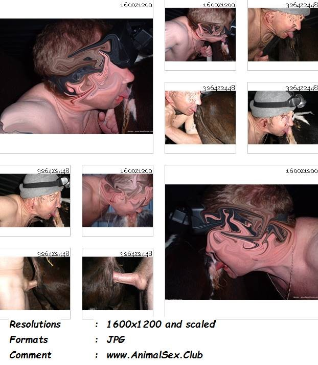 212602899 0281 manzfoto lickin a bit of calf pussy pics   10 pics - Lickin A Bit Of Calf Pussy Pics - 10 Pics - Male Zoophilia Pictures