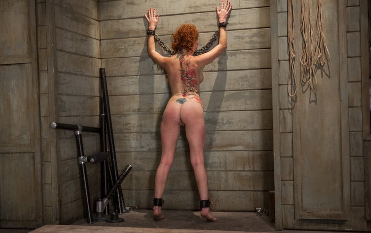 Audrey Hollander - Training of a Party Girl, Day Three [TheUpperFloor/Kink] HD 720p