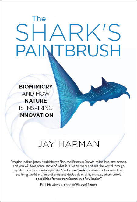 The Shark's Paintbrush  Biomimicry and How Nature is Inspiring Innovation by Jay H...