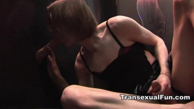 TransexualFun.com: Lisa Heart - At The Gloryhole [HD 720p] (117.5 Mb)