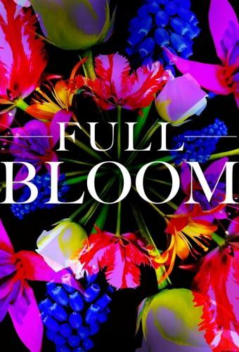 Full Bloom S02E01 1080p WEB h264-KOGi