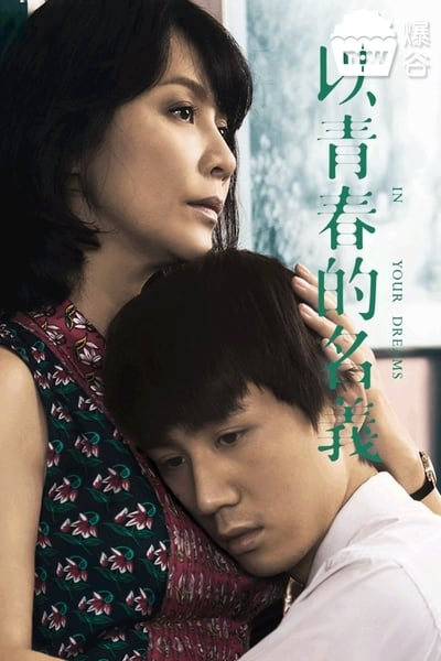 In Your Dreams 2017 CHINESE 1080p BluRay x265-VXT