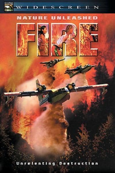 Nature Unleashed Fire 2004 1080p WEBRip x265-RARBG
