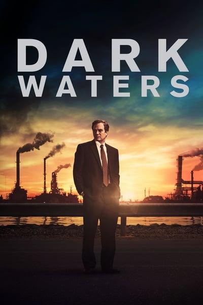 Dark Waters 2019 MULTi 2160p HDR WEBRip DTS-HD MA 5 1 HEVC-DDR